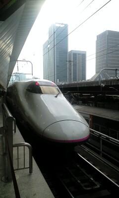 20081115134435