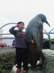大きいペンギン?