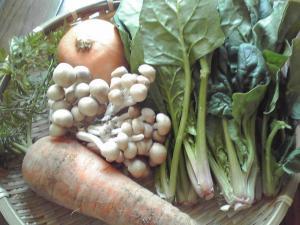 抗酸化作用のある食材