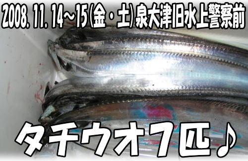 今日の釣果(*^^)v♪