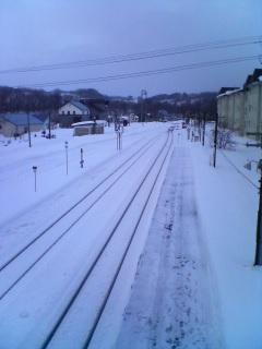 2009年1月・携帯写真 060