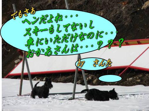 20070213210145.jpg