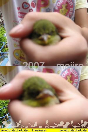 20070531221908.jpg