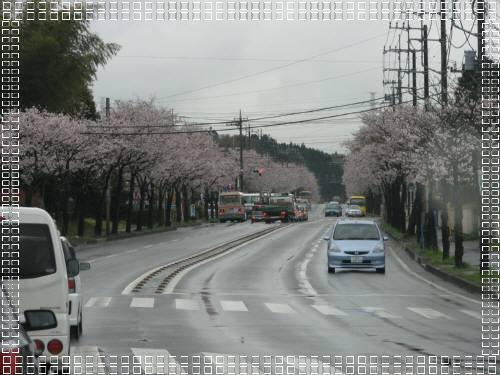 IMG_2403-1.jpg