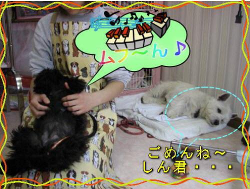 fuku0301-2.jpg
