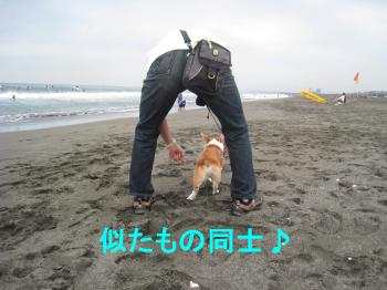 IMG_5656_convert_20080824200305.jpg
