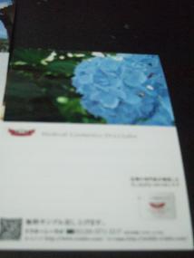 DSCF2590.jpg