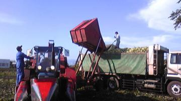 収穫ジャックでトラックに