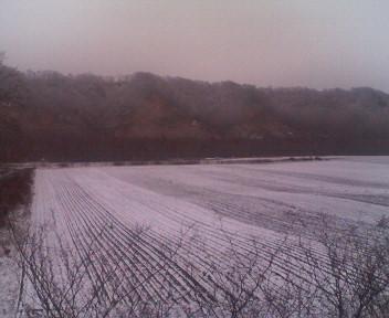 ビート畑に初雪