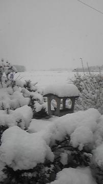 初冬の大雪