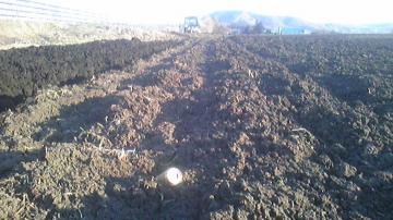畑の空き缶