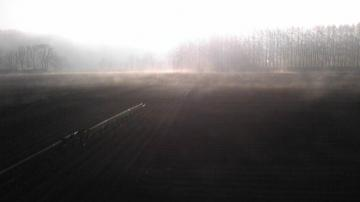 朝もやの中を除草剤