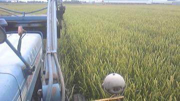 小麦防除3回目防除畝