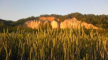 麦穂と夕日のガンケ