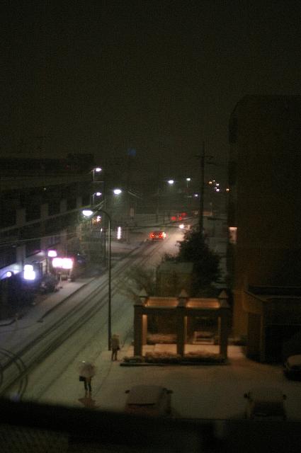 また、雪。