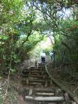 葛城山、登り途中