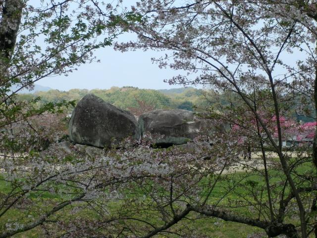 桜と石舞台