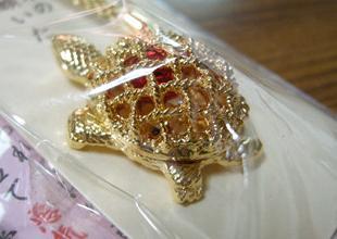 kanda-kame091104c1.JPG
