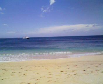 フランクランド島の浜辺