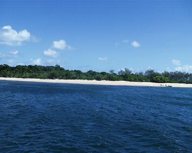 バイバイ、フランクランド島