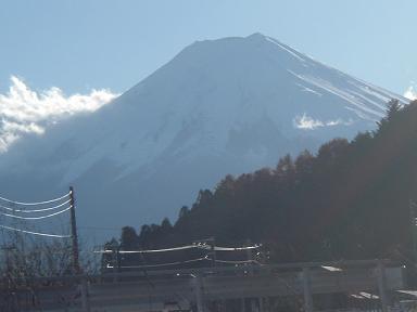 fuji1118.jpg