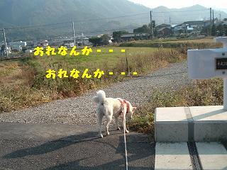 fujiden3.jpg