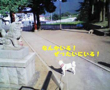 icyou41.jpg