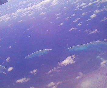 バイバイ、珊瑚礁・・・