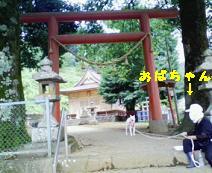 sanpo8113.jpg