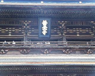 zenkou4.jpg