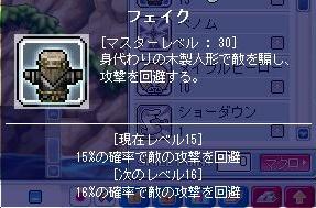 feiku30seikou-2.jpg