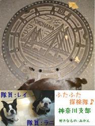 ふたふた探検隊04
