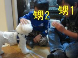 DSC07558.jpg