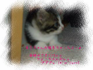 h20-9-200121.jpg