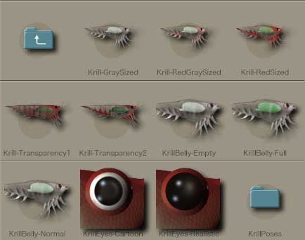 Krill4.jpg