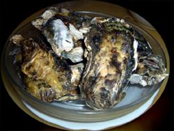 いただいた殻つき牡蠣