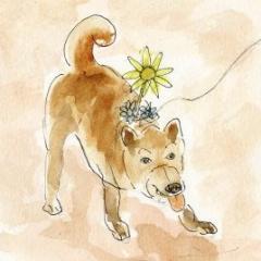 ハナ刺さり犬