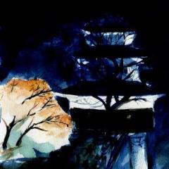 夜中の丸亀城天守閣