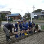 ジャガイモの植え付け03