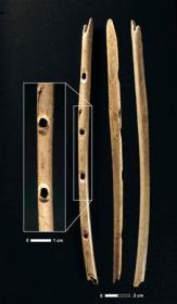 旧石器時代のフルート(ネイチャーより)
