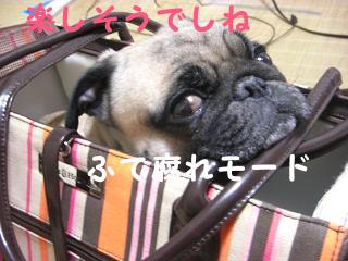 えべっさんー2-3