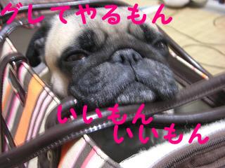 えべっさんー2-10