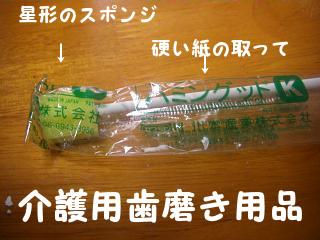 わんこと歯磨きー2
