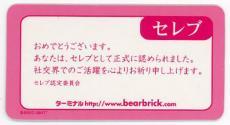 bear17-topsc3-06.jpg
