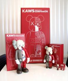 kaws1000-jinntai-03.jpg
