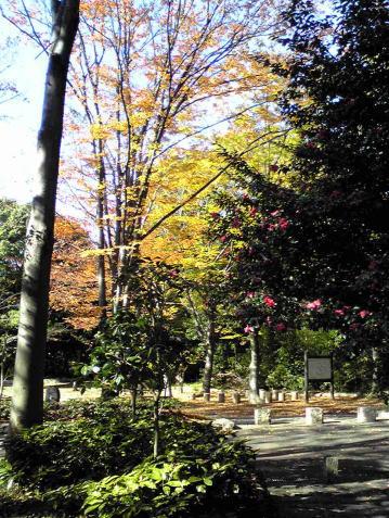 kuosyouji2-1.jpg