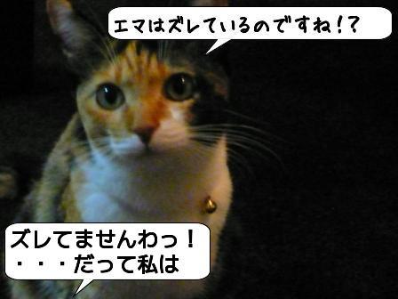 0111t1x.jpg