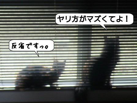 b2xx.jpg