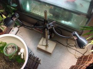 2008.10.14【外水槽ライト設置】 (2)
