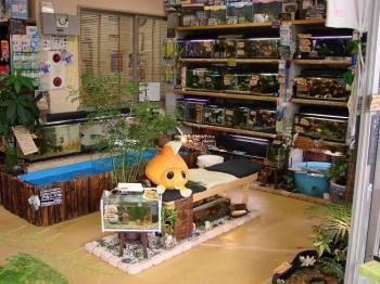 2008.11.10【店舗入り口プチ改装】 (1)